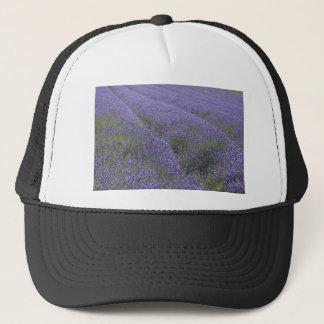 Lavender fields, Kent, UK Trucker Hat