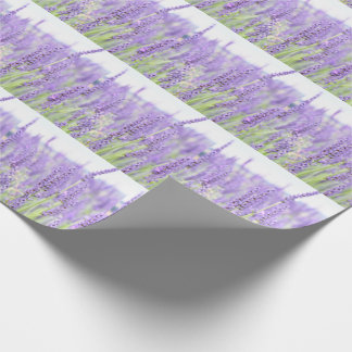 Lavender fields photography, various gifts wrapping paper