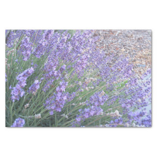 Lavender Flower Tissue Paper | Nature Photography