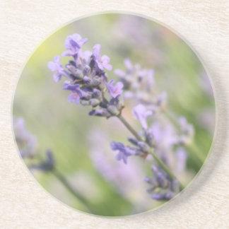Lavender Flowers. Coaster