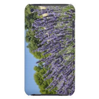 Lavender flowers in field at summer, Provence Case-Mate iPod Touch Case