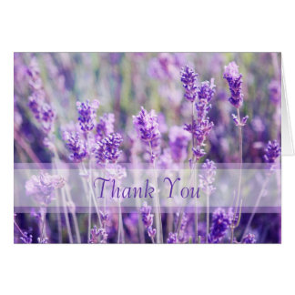 Lavender Flowers Thank You Note Card