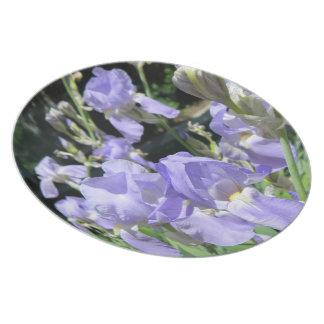 Lavender Freesia Plate