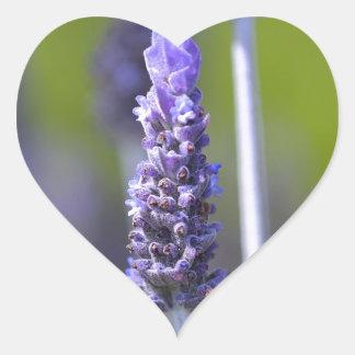 Lavender Heart Sticker