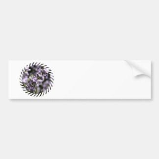 Lavender Herbs Bumper Stickers