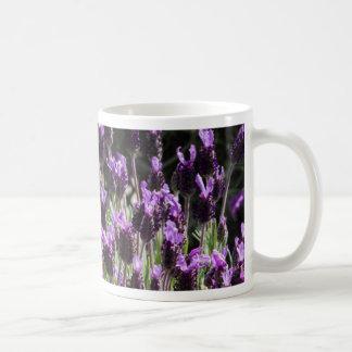 lavender in the garden coffee mug