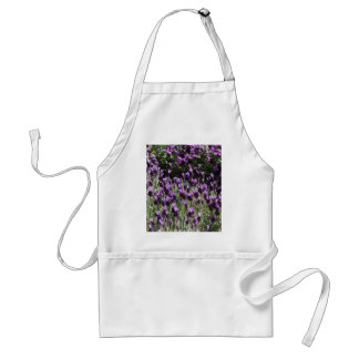 lavender in the garden standard apron