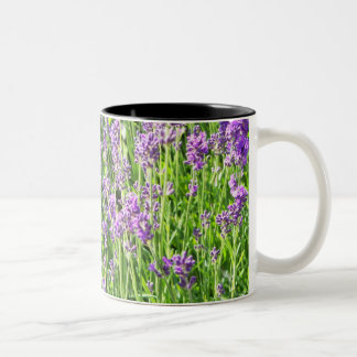 Lavender in the Grass Two-Tone Coffee Mug