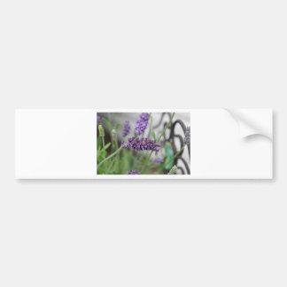 Lavender Iron Bumper Sticker