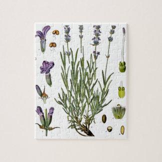 Lavender Jigsaw Puzzle