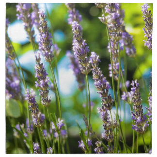 Lavender morning napkin
