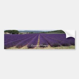 Lavender of Provence Bumper Sticker
