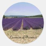 Lavender of Provence Round Sticker
