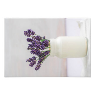 Lavender Photo Print