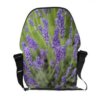 Lavender plants messenger bag
