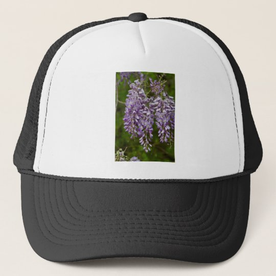 Lavender Purple Wisteria Wildflower Vine Cap