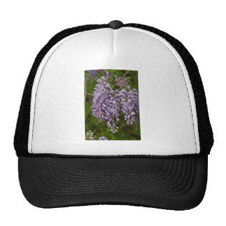 Lavender Purple Wisteria Wildflower Vine Cap