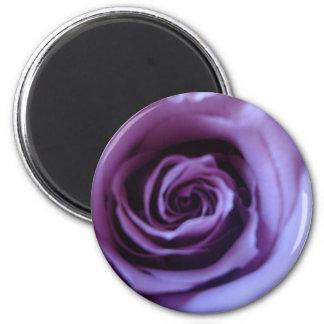 Lavender Rose 6 Cm Round Magnet