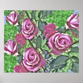 Lavender Rose Bush Poster