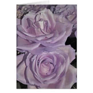 Lavender Roses Greeting Card