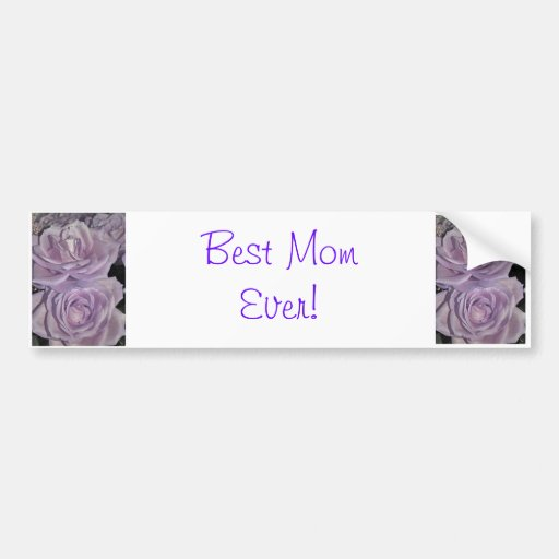 Lavender Roses collection Bumper Stickers