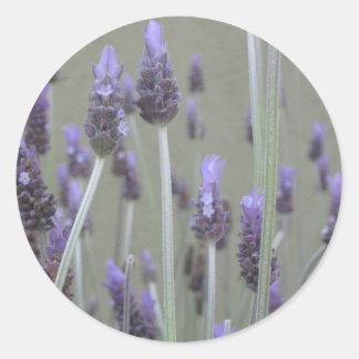 Lavender Round Sticker