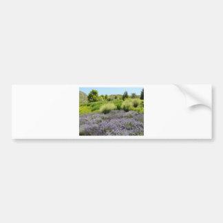 lavender scenery bumper sticker