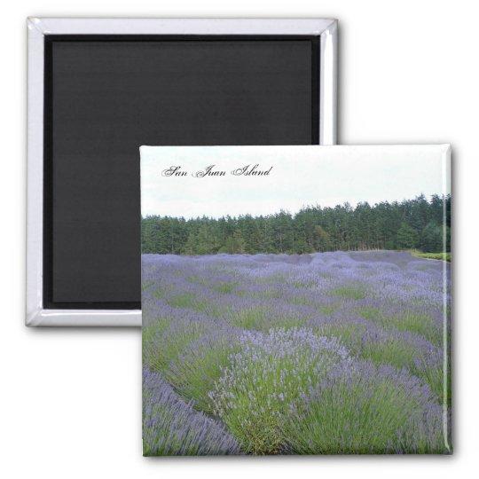 Lavender Square Magnet