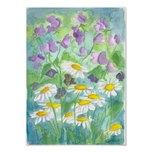 Lavender Sweet Pea Shasta Daisy Watercolor Poster