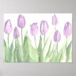 Lavender Tulip Flower Garden Spring Watercolor Poster