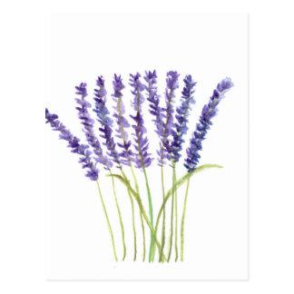 Lavender watercolour painting, purple flowers postcard
