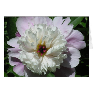 """LAVENDER & WHITE PEONY"" NOTE CARD"