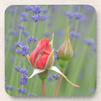 Lavender with Roses Beverage Coasters