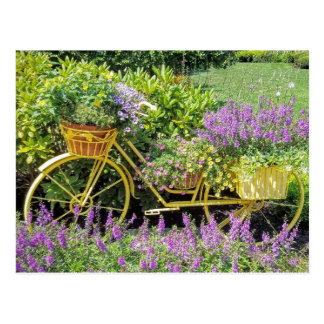 Lavender & Yellow Bicycle Planter Postcard