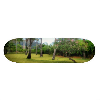 Lawn to play in skate board