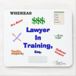 Lawyer in Training