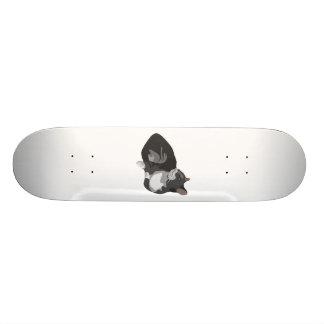 Laying Cat Skateboard Deck