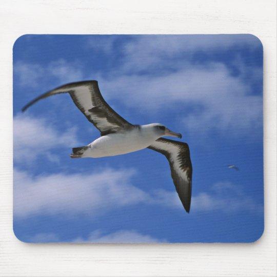Laysan albatross flying in air mouse mat