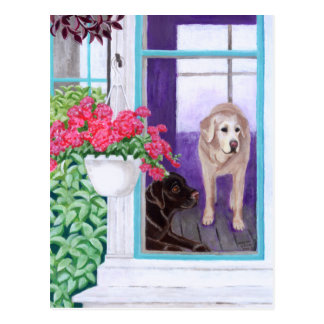 Lazy Afternoon Labradors Painting Postcard