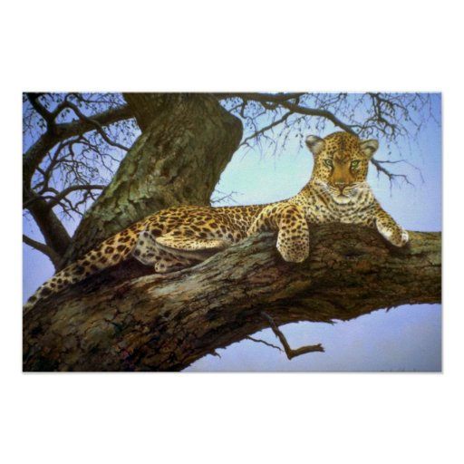 Lazy day, Leopard Poster