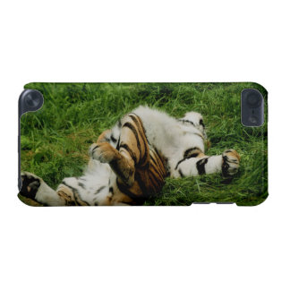 Lazy Day Tiger iPod Touch (5th Generation) Covers