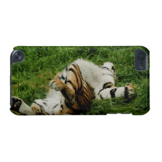 Lazy Day Tiger iPod Touch (5th Generation) Cover