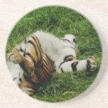 Lazy Day Tiger Coaster