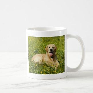 Lazy Golden Coffee Mugs