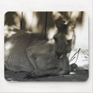 lazy kangaroo mouse pad