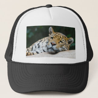 Lazy Leopard Trucker Hat