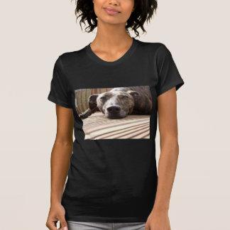 Lazy Lurcher T-Shirt