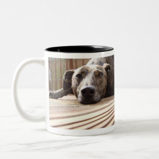 Lazy Lurcher Two-Tone Mug