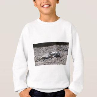 Lazy meercat sweatshirt
