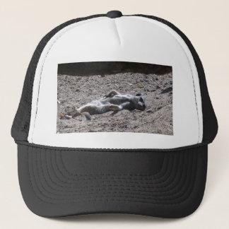 Lazy meercat trucker hat